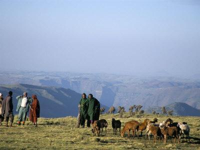 Shepherds at Geech Camp, Simien Mountains National Park, Unesco World Heritage Site, Ethiopia