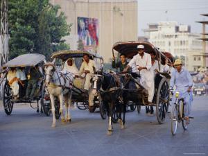 Street Scene with Horse Drawn Carriages, Rawalpindi, Punjab, Pakistan by David Poole