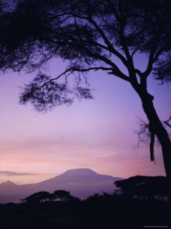 Sunrise, Mount Kilimanjaro, Amboseli National Park, Kenya, East Africa, Africa by David Poole