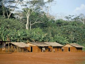 Village in the Jungle, Northern Area, Congo, Africa by David Poole