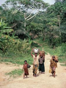 Women Coming Form the Fields, Assoumdele Village, Northern Area, Congo, Africa by David Poole