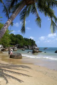 Beach, Gulf of Thailand on the Island of Ko Samui, Thailand by David R^ Frazier