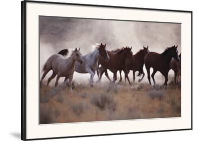 Grassland Herd