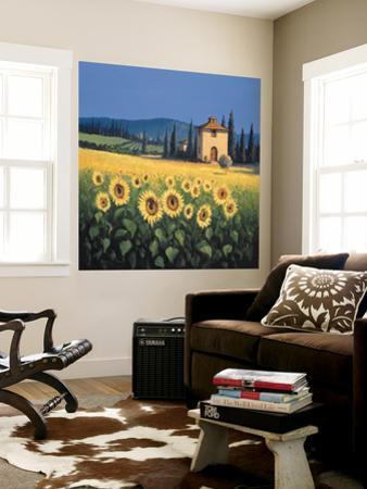 Beautiful Country wall murals artwork for sale Photos and Prints