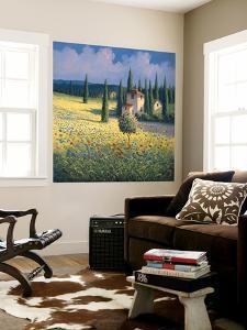 Tuscan Poppies I by David Short