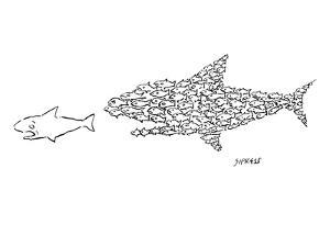 A shark is chased by a school of fish that has organized into the shape of? - New Yorker Cartoon by David Sipress