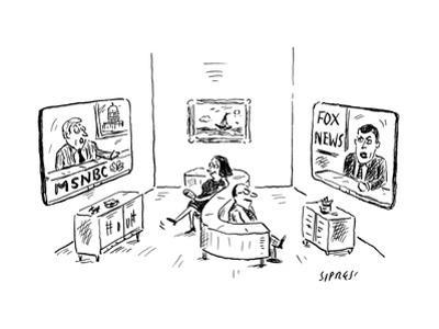 Two people on s-shape couch: one watching MSNBC, the other watching Fox Ne - New Yorker Cartoon by David Sipress