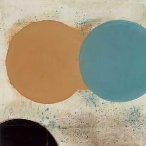 Terra Circles I by David Skinner