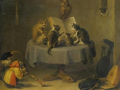 Cat and Monkey Concert