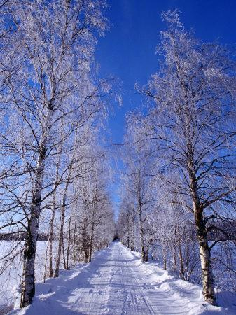 Snow on Country Road, Liminka, Finland