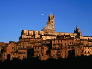 Cathedral and Houses Below the Moon, Siena, Tuscany, Italy by David Tomlinson