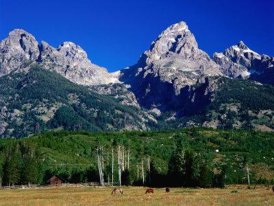 Grand Teton, Near Cottonwood Creek, Grand Teton National Park, Wyoming