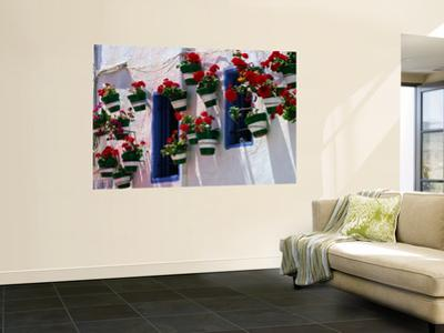 Green and White Plantpots Containing Red Geraniums