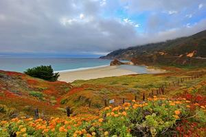 Pacific Coast Highway and Little Sur River by David Toussaint