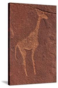Ancient Rock Etchings, Twyfelfontein, Damaraland, Namibia by David Wall
