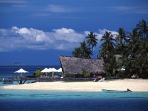Castaway Island Resort, Mamanuca Islands, Fiji by David Wall