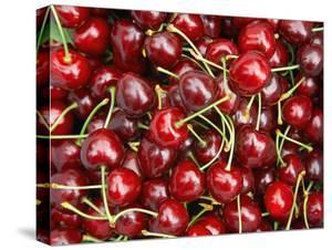 Cherries, Ripponvale, near Cromwell, Central Otago, South Island, New Zealand by David Wall