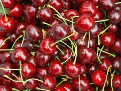 Cherries, Ripponvale, near Cromwell, Central Otago, South Island, New Zealand by David Wall
