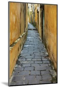 Cobblestones and yellow walls in alleyway, Hoi An, Vietnam by David Wall