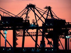 Container Cranes, Port of Auckland by David Wall
