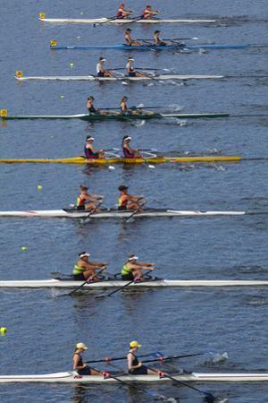 Double Scull Race, Maadi Cup Regatta, Lake Karipiro, Waikato, North Island, New Zealand by David Wall