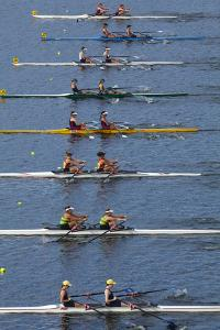 Double Scull Race, Maadi Cup Regatta, Lake Karipiro, Waikato, North Island, New Zealand by David Wall