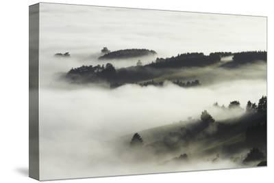 Fog over Otago Harbour and Otago Peninsula, Dunedin, South Island, New Zealand