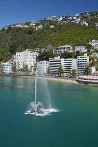 Fountain, Oriental Bay, and Mt Victoria, Wellington, New Zealand by David Wall