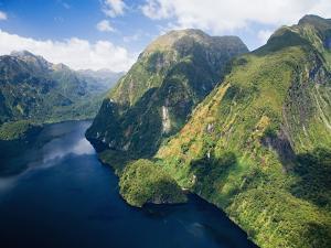 Hall Arm, Doubtful Sound, Fjordland National Park, South Island, New Zealand by David Wall