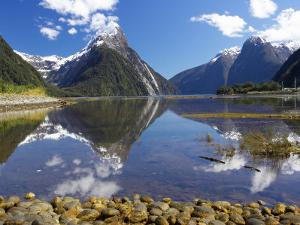 Mitre Peak, Milford Sound, Fiordland National Park, South Island, New Zealand by David Wall