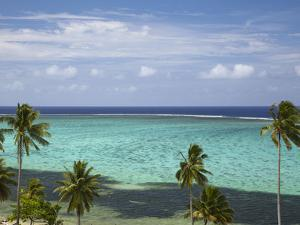 Palm Trees and Coral Reef, Crusoe's Retreat, Coral Coast, Viti Levu, Fiji, South Pacific by David Wall