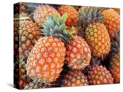 Pineapples, Sunshine Coast, Queensland, Australia
