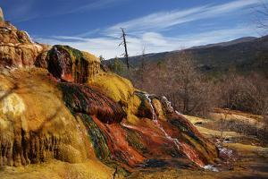 Pinkerton Hot Springs, Animas Valley by David Wall