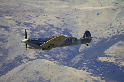 Supermarine Spitfire, British and Allied WWII War Plane, South Island, New Zealand by David Wall