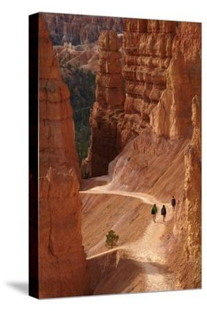 Utah, Bryce Canyon National Park, Hikers on Navajo Loop Trail Through Hoodoos