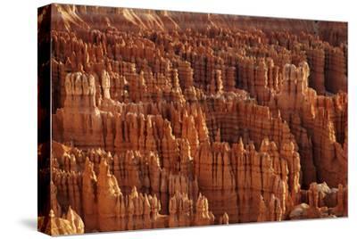 Utah, Bryce Canyon National Park, Hoodoos in Bryce Amphitheater
