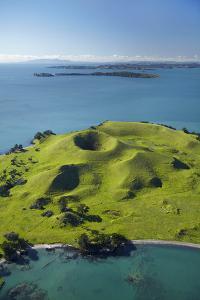 Volcanic Craters on Browns Island, or Motokorea, Hauraki Gulf, Auckland, North Island, New Zealand by David Wall