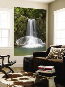 Waiau Waterfall Near 309 Road, Coromandel Peninsula, North Island, New Zealand by David Wall