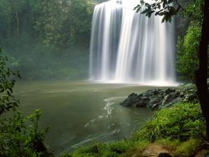 Whangarei Falls, Whangarei, Northland, New Zealand by David Wall