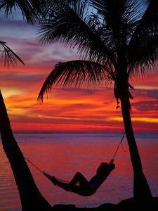 Woman in Hammock, and Palm Trees at Sunset, Coral Coast, Viti Levu, Fiji, South Pacific by David Wall