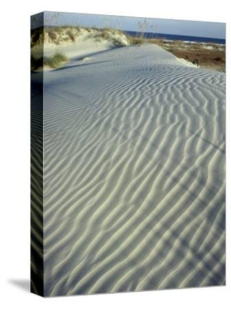 Dunes, Cumberland Island National Seashore
