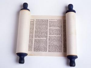 Torah by David Wasserman