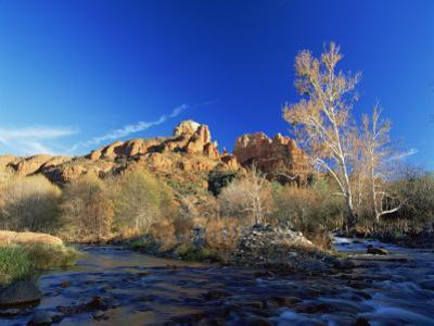 Oak Creek Running Before Cathedral Rocks, Red Rock Crossing, Sedona, Arizona, USA by David Welling