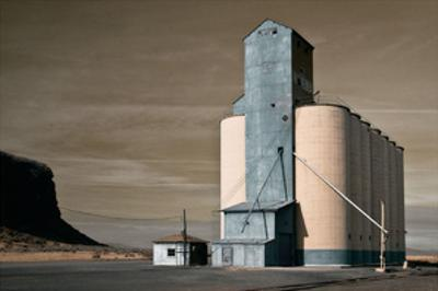 Grain Elevator by David Winston
