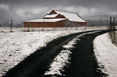 Late Winter Morning by David Winston