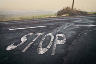 Stop Landscape by David Winston