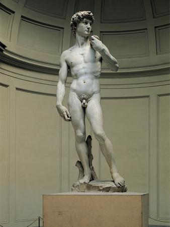 David-Michelangelo Buonarroti-Photographic Print