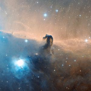 Horsehead Nebula by Davide De Martin
