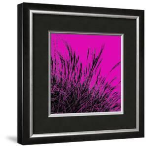 Grass (magenta), c.2011 by Davide Polla