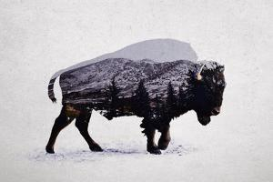 The American Bison by Davies Babies